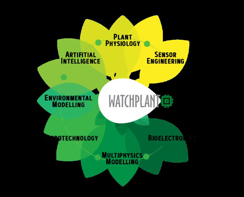 watchplant esquema